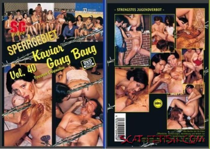 SG-Video (Tima, Sylvia) Sperrgebiet 40 - Scat Gang bang [DVDRip] Group, Germany