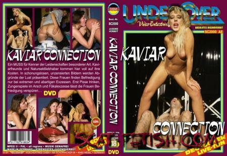 DBM Videovertrieb (ShitGirl) Kaviar Connection [DVDRip] All Sex, Germany