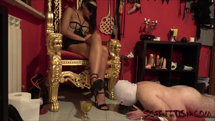 Toilet Slavery (Mistress Gaia) The training goes on [FullHD 1080p] Domination, Scat