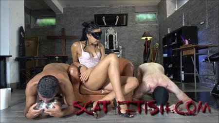Femdom (Mistress Gaia) Who's the best shit-eater? [FullHD 1080p] Scat, Domination